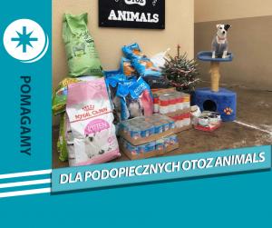 Wspieramy zwierzaki z OTOZ Animals